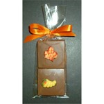 Autumn Doubles Chocolate Layered Squares with Candy Coating