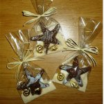 Chocolate Starfish with Foiled Chocolate Sea Shells in Cello