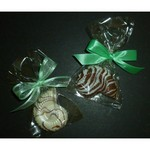 Nautilus White Chocolate Sea Shell in Cello Bag with Bow