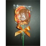 Fancy Chocolate Turkey Pop