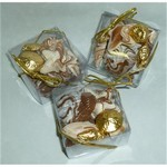 Chocolate Sea Shells with Foiled Shells in  Square Box.